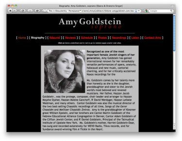 amygoldstein-com_before